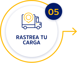 paso5