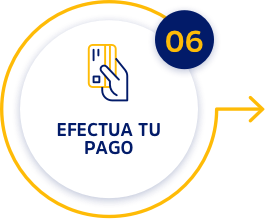 paso6
